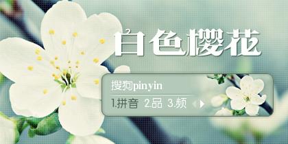 【景诺】白色樱花