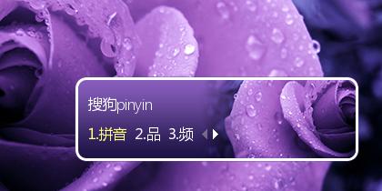 【初久】清晨的紫色玫瑰