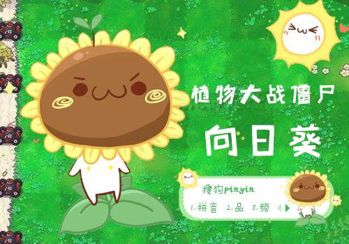 植物大战僵尸-向日葵